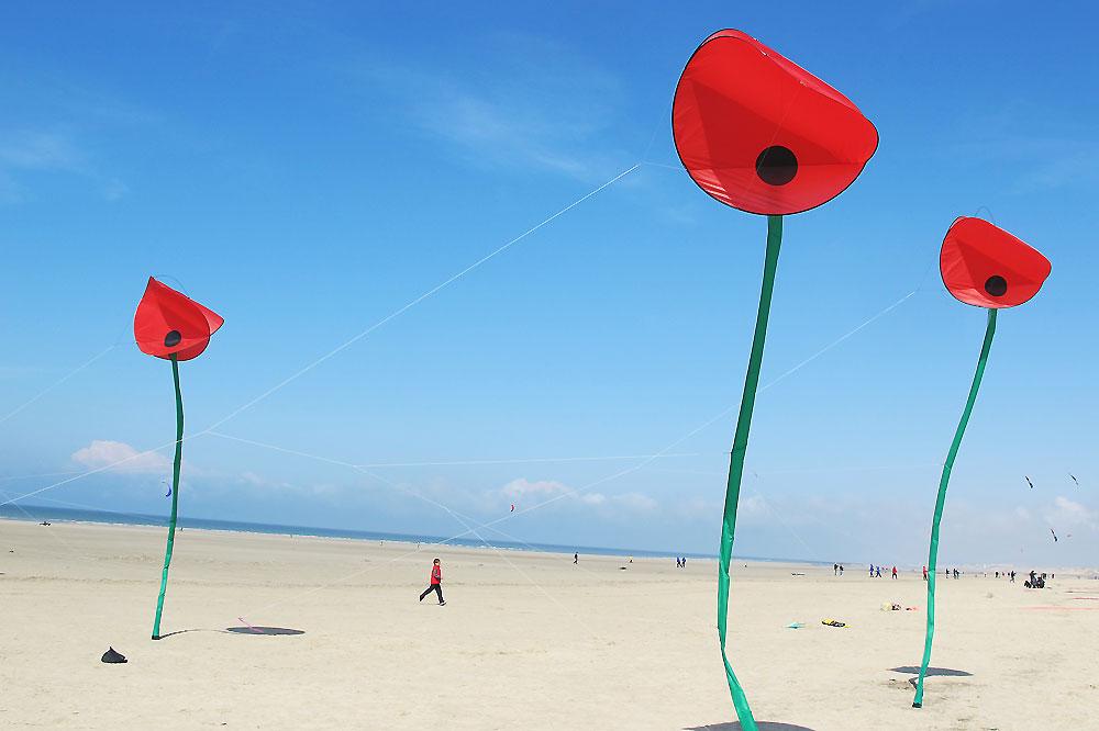 flower-kites-in-berck