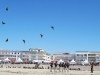 worldcup-in-berck