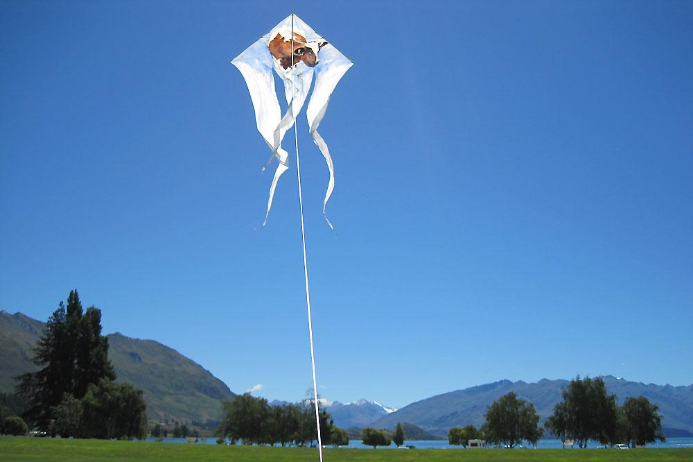 antipodes-kites-vii-wanaka