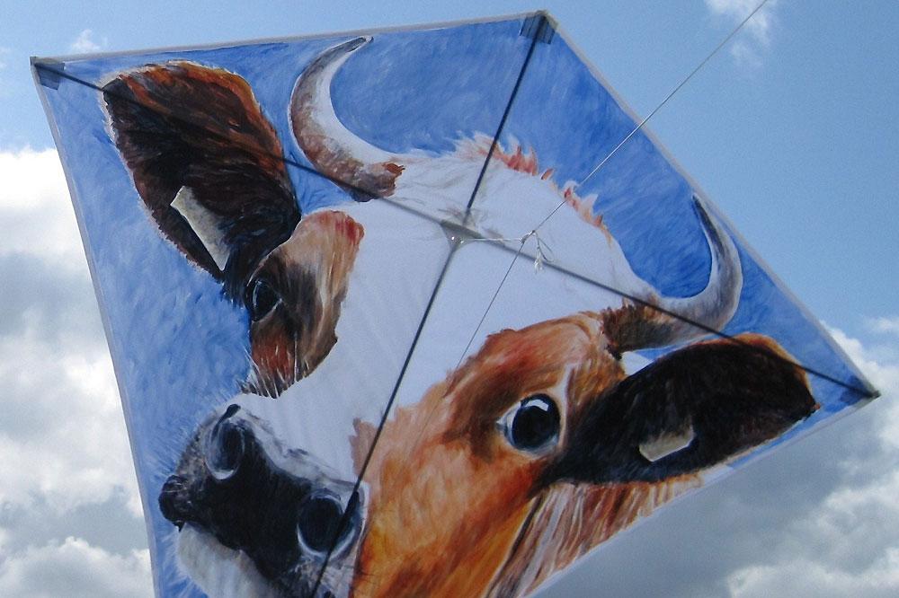 antipodes-kites-viii-2010-acryl-op-spinnakerdoek-jelsma-koe-3