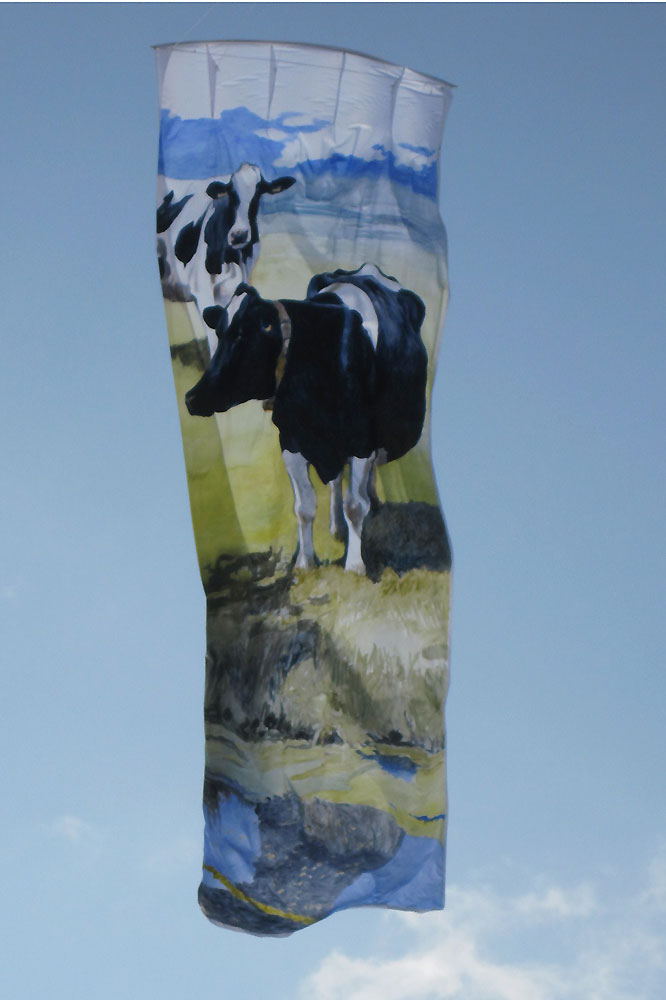 antipodes-kites-xtegenvoeters-kites-x-400-x-150-cm-acrylic-on-ripstopnylon-bedsheetkite-2011