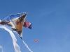 fi-dh-aan-strand-vliegeren11-5-vliegers-in-de-lucht