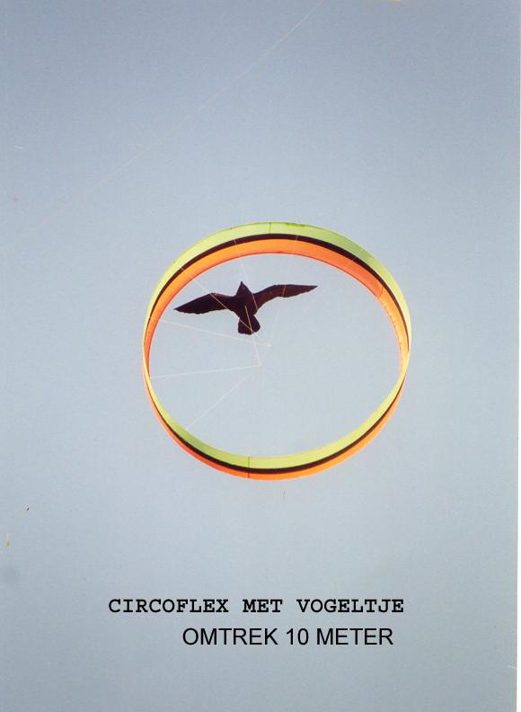 circoflexvogeltjekopie