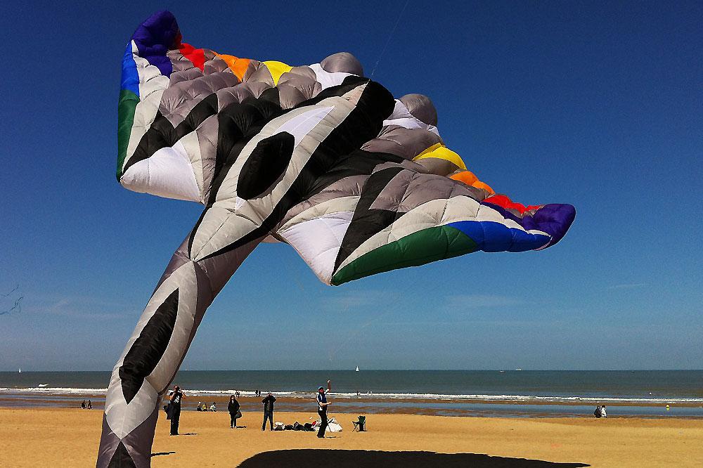 oostende-kite-festival-manta-kite3